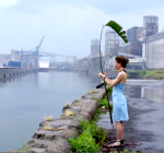 la plante en ville 5, juillet 2012