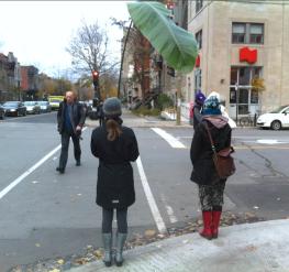 la plante en ville VII, nov. 2013