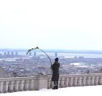la plante en ville 8, 26 mars 2014
