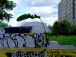 la plante en ville 10, le 12 août 2015